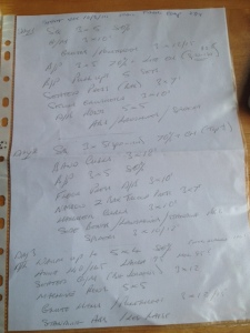 My new program, in my coach's distinctive handwriting