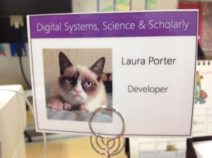 Is it any wonder my desk nameplate features a picture of Grumpy Cat?